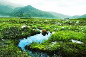 Камчатка: почему она обязательный пункт для ежегодных путешествий.