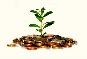 Что представляет собой электронная валюта?