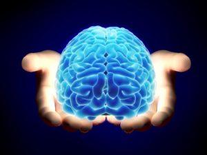 Заморозьте мозг для его оцифровки в будущем