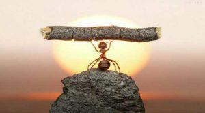 Как укрепить силу воли?